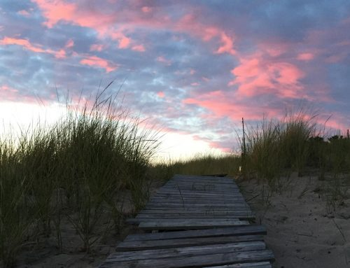 Summer 2017: 1-Day Women's Renewal Retreat for Body, Mind & Soul